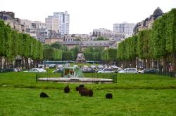 Париж, прибытие и прогулка к Эйфелевой башне_16