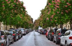 Париж, прибытие и прогулка к Эйфелевой башне_6