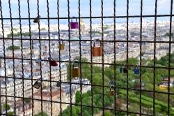 Подъем на Эйфелеву башню, Лебяжий остров и Статуя Свободы_23