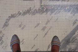 Подъем на Эйфелеву башню, Лебяжий остров и Статуя Свободы_26